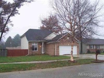 Algonac Single Family Home For Sale: 9526 Rachel Rd