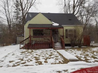 Flint Single Family Home For Sale: 3806 Race St