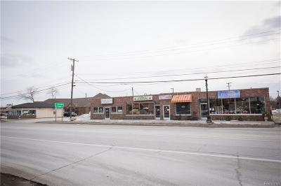 Richmond Commercial/Industrial For Sale: 67357 S Main St