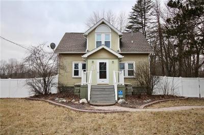 Belleville Single Family Home For Sale: 20380 Wilmot Rd