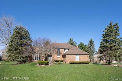 Rochester Hills Single Family Home For Sale: 1187 Chaffer Dr