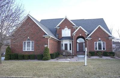 Shelby Twp Single Family Home For Sale: 14168 Mandarin Dr