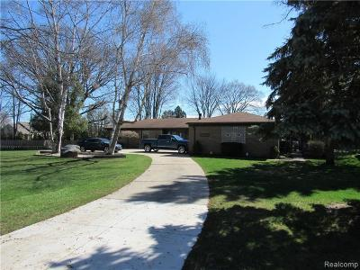 Clinton Township Single Family Home For Sale: 36240 Harcourt