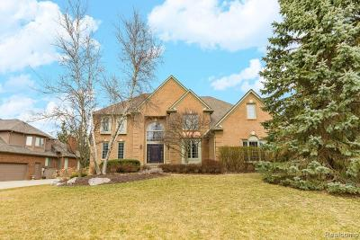Rochester Hills Single Family Home For Sale: 3700 Newcastle Drive