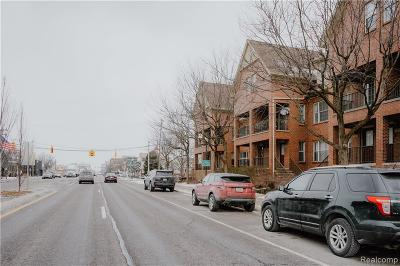 Royal Oak Condo/Townhouse For Sale: 1319 South Main St