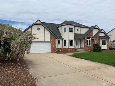 Shelby Twp Single Family Home For Sale: 5684 Parshall Dr
