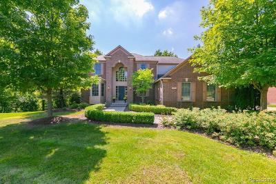 Rochester Single Family Home For Sale: 3961 Ridgemonte