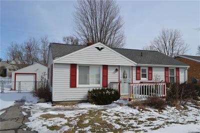 Flint Single Family Home For Sale: 4163 Van Slyke Rd
