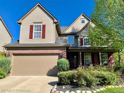 Northville Single Family Home For Sale: 50088 Venice Crt
