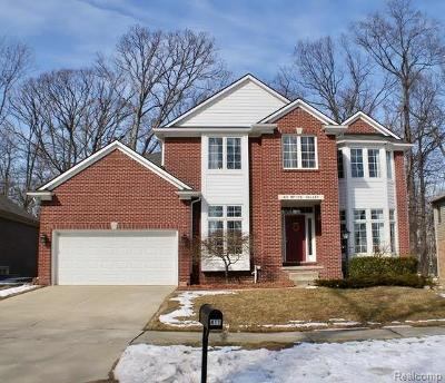 Rochester Hills Single Family Home For Sale: 411 Mystic Valley