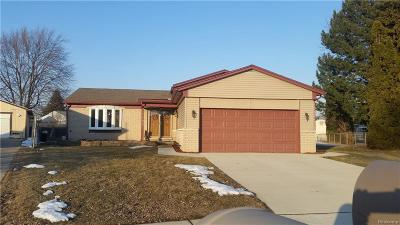 Sterling Heights Single Family Home For Sale: 4859 Nathan W