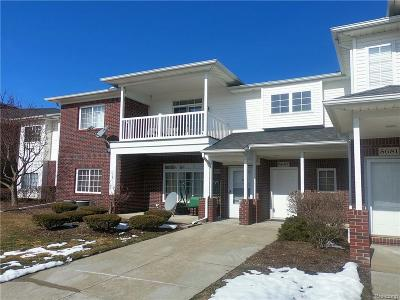 Sterling Heights Condo/Townhouse For Sale: 5687 Acorn Ln