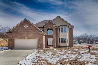Macomb Single Family Home For Sale: 49586 Mainstee Drive Dr