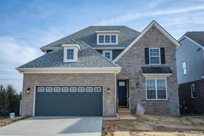 Northville Single Family Home For Sale: 47765 Fieldstone Dr