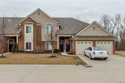 Sterling Heights Condo/Townhouse For Sale: 14366 Shadywood Dr
