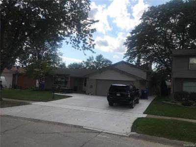 Dearborn Single Family Home For Sale: 543 Berwyn St