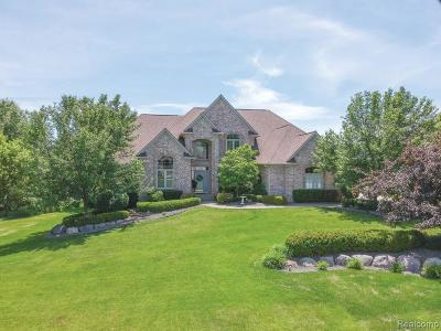 Rochester Single Family Home For Sale: 555 Parkland Hills Dr