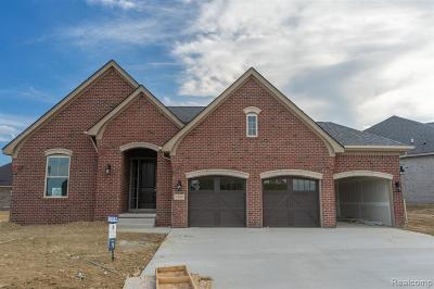 Washington Single Family Home For Sale: 7160 Middlecoff Dr