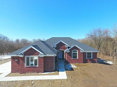 Lapeer Single Family Home For Sale: 4888 Glover Rd