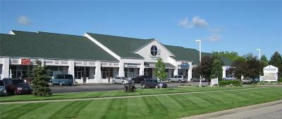Commercial Lease For Lease: 38157 Utica Rd
