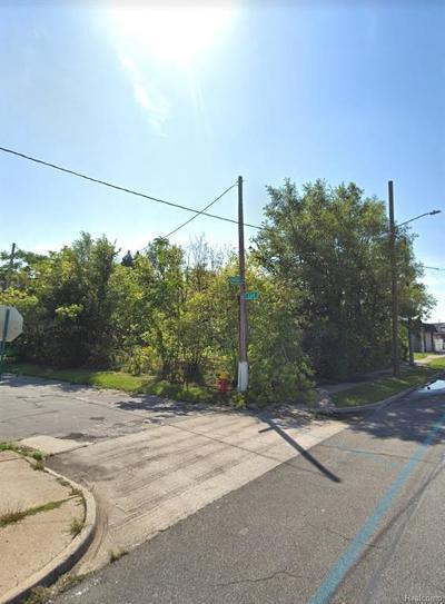 Detroit Residential Lots & Land For Sale: 8452 Van Dyke