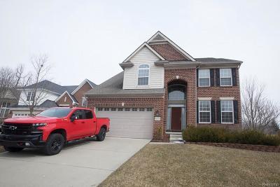 Northville Single Family Home For Sale: 16406 Ridgewood Crt