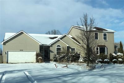 Lapeer Single Family Home For Sale: 8791 Hough Rd