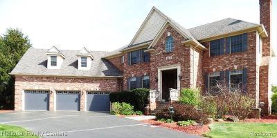 Clarkston Single Family Home For Sale: 6875 Palmyra Ln