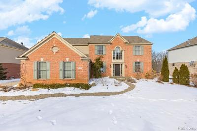 Rochester Single Family Home For Sale: 5220 Creekmonte Dr