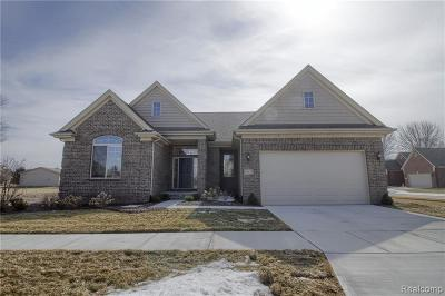 Macomb Single Family Home For Sale: 49529 Ishpeming Dr