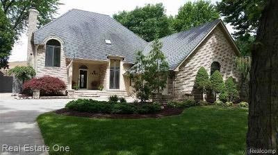 Macomb Single Family Home For Sale: 38389 Townhall St