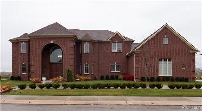 Detroit Single Family Home For Sale: 26 Sand Bar Lane