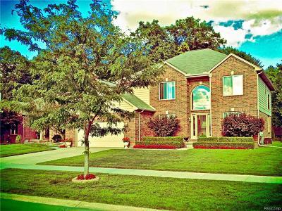 Macomb Single Family Home For Sale: 53412 Bradford Crt