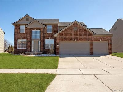 Rochester Hills Single Family Home For Sale: 3170 Fantail Dr