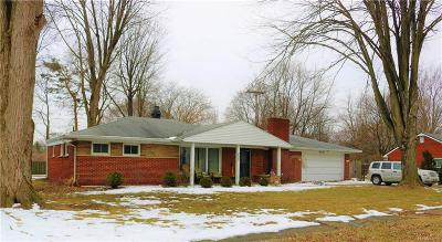 Clinton Township Single Family Home For Sale: 22432 Remick Dr