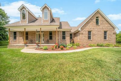 Clarkston Single Family Home For Sale: 9587 Ellis Rd