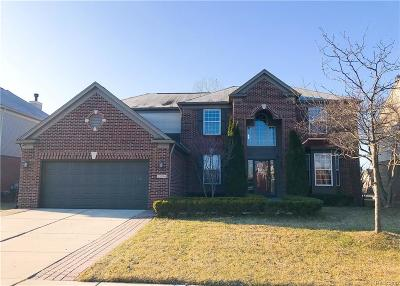 Macomb Single Family Home For Sale: 21994 Gailes Dr