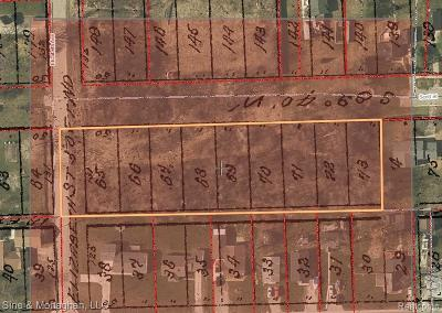 Marine City Residential Lots & Land For Sale: Scott St