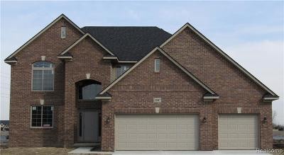 Macomb Single Family Home For Sale: 22047 Rivanna Dr