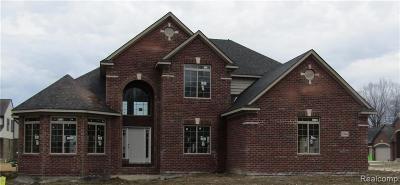 Macomb Single Family Home For Sale: 22061 Rio Grande Dr