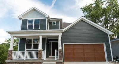 Rochester Hills Single Family Home For Sale: 10 Cone Ave