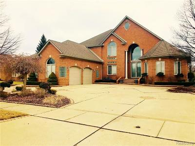Shelby Twp Single Family Home For Sale: 55618 Saint Regis