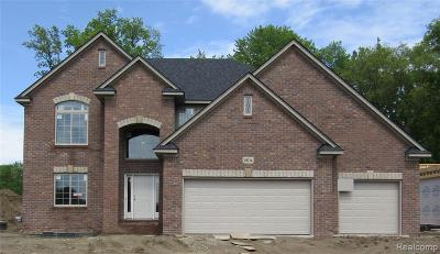 Macomb Single Family Home For Sale: 49214 Ridgeview Dr
