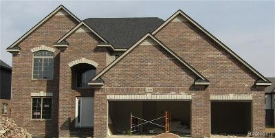 Macomb Single Family Home For Sale: 22029 Rio Grande Dr