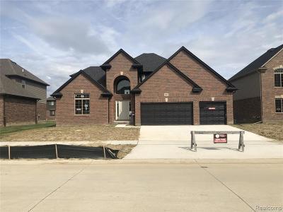 Macomb Single Family Home For Sale: 22013 Rio Grande Dr
