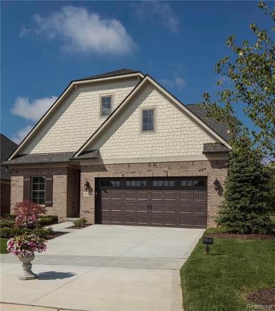 Auburn Hills Single Family Home For Sale: 4100 Ashton Dr