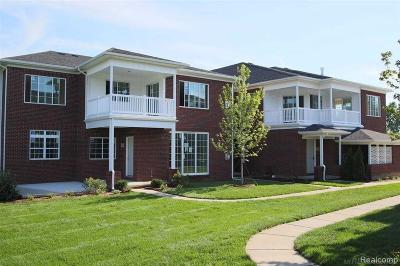Macomb Condo/Townhouse For Sale: 6749 Boulder Pointe Dr