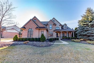 Canton Single Family Home For Sale: 48591 Gladstone Rd