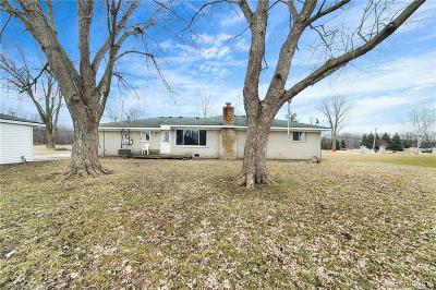 Macomb Single Family Home For Sale: 51811 Card Rd