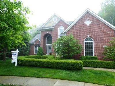 Clarkston Single Family Home For Sale: 4804 Eagle Springs Crt